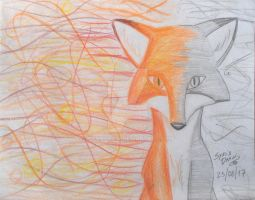 Fox's colors by SynieDraw