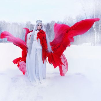 Red Wings, White Snow by alberti