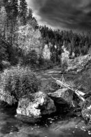 spearfish rocks001 by reefster39