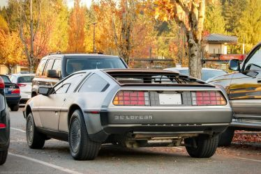Autumn Delorean by SeanTheCarSpotter