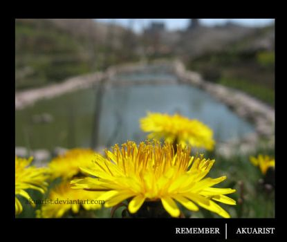 Remember by akuarist