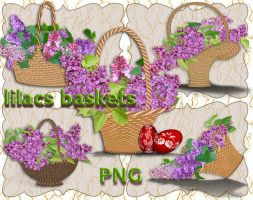 Lilacs Baskets by roula33