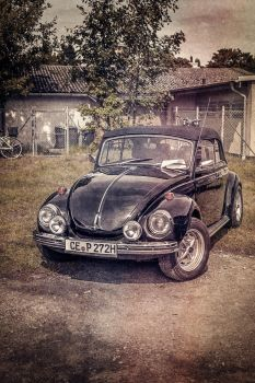 Old Beetle by Rusch691