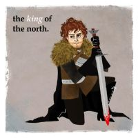 Robb Stark by michA-sAmA