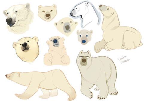 bears by gingerbreadcat