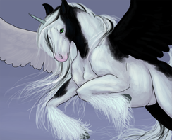 GGAX: Colt by EmberGryphon