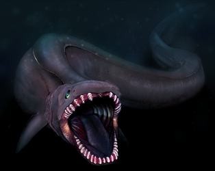 frilled shark by DemonsHeir