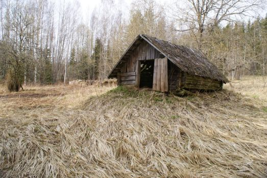 old house by Liisistock