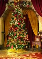 A Disney Christmas IMG 0238 by TheStockWarehouse