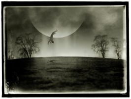 The Man Who Fell From the Moon by stefanparis