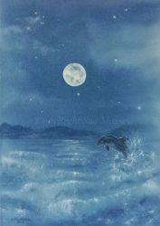 Dolphin in the Moonlight. by SueMArt