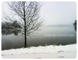 lake and snowflakes by Aajla