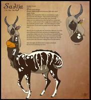 VoS: Sadija Reference Sheet by CookieAsylum
