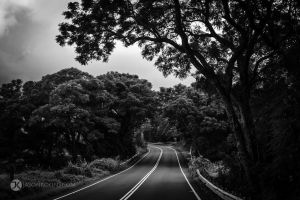(Up)Country Roads | Maui by JasonKoons