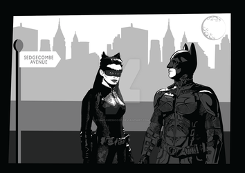 TDKR Batman and Catwoman by madamemoose