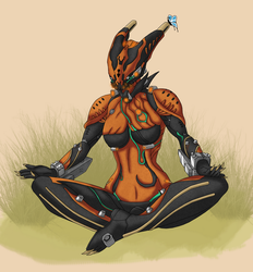 Warframe: Rage at Rest by Damatee