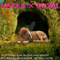 Layla X Royal by MagsHemmings132296