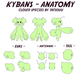 Species Info - Kyban by Tatsouu