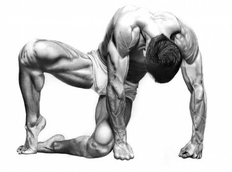Male Bodyscape Drawing No.2 by Paul-Shanghai