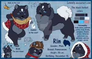 Rin_NEW Character sheet by LewKat
