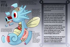 Horsea Anatomy- Pokedex Entry by Christopher-Stoll
