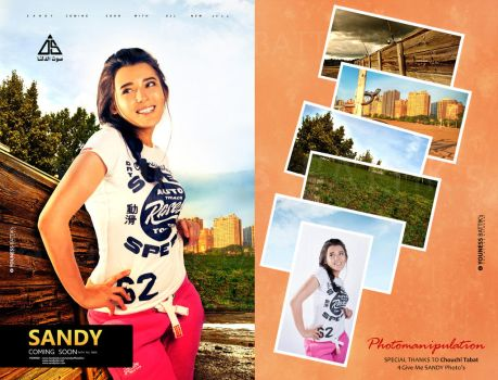 photomanipulation For Poster Sandy 2013 II by younessdesigns
