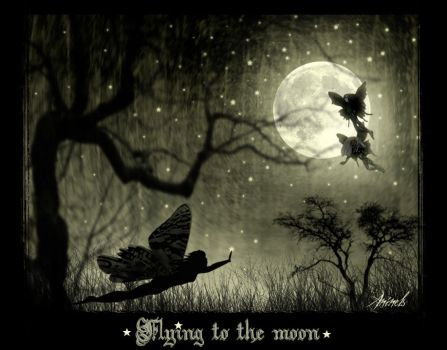 . Flying to the Moon . by aninels