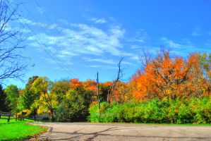 HDR Fall Road by Bodatheyoda
