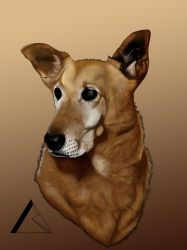 My Brother Peque, RIP by Blazten