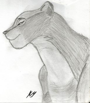 2008 Sketch 1 - Nala by RoseSparrow