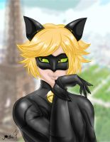 Chat Noir Fan art by JamilSC11