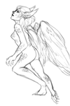 harpy sketch by nyrrus
