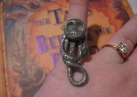 Death Eater-inspired Ring by tanytany