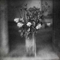 Still life with flowers by invisigoth88