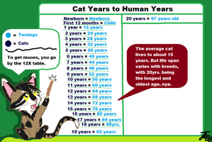Fun Facts With Northwind ll Cat Aging by AriaSnow