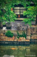 JAPAN XII by WindyLife