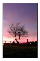 trees and towers by akkict-photo
