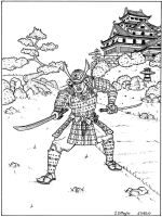 The Samurai by Dumegg