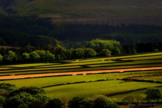 Holme Valley fields by jmbroscombe