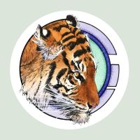 Tiger in the Round 10 by PENICKart