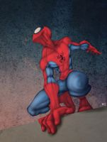 Spidey on the Roof by drucpec