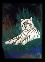White Tiger on Slate by KenshinKyo