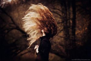 black raven heart by Snowfall-lullaby