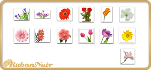 ImagePack 07 - Flowers by Lady-Himiko