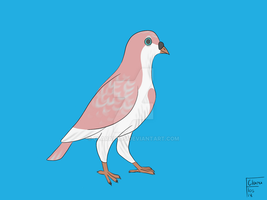 pigeon adoptable #1 by ClaraFlos