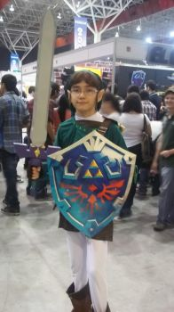 Link Cosplay by BigAlax