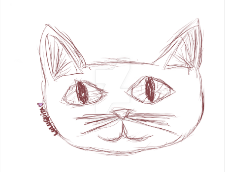 1st draw in Wacom Tablet. by lulutiquita