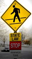 State Law by ksouth