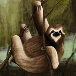 It's a Sloth by kimded