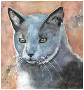Kitty by Paintwick